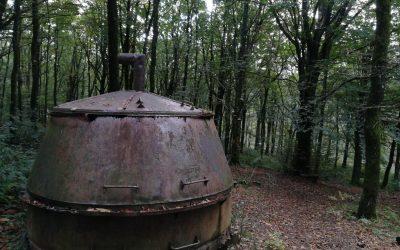 Balade en famille dans la Forêt d'Aiguille dans la montagne noire, Occitanie